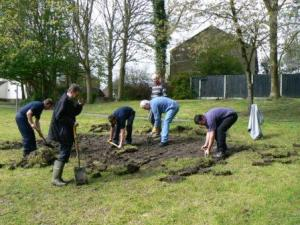 Preparing a wild flower meadow