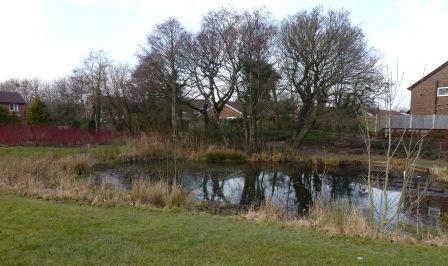 Marsh Way Pond
