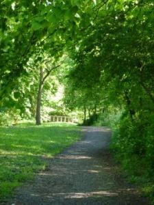 Greencroft Valley