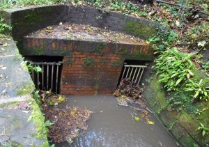 Fish House Brook, Culvert under Hill Rd South