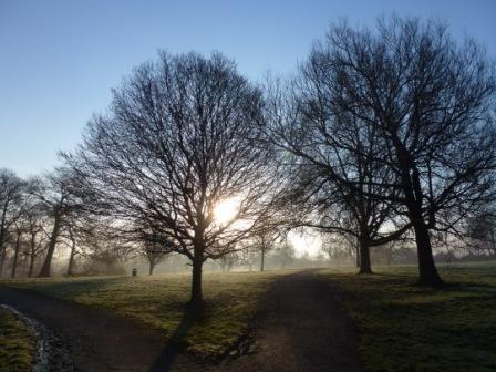 Middleforth Green