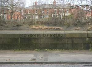 Fish House Bridge