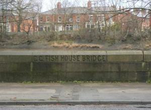 Fish House Bridge