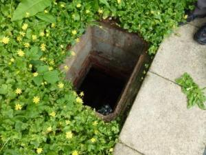 FHB culverted tributary - Copy