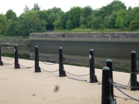 River Ribble, water level