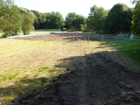 Destruction of the Meadow
