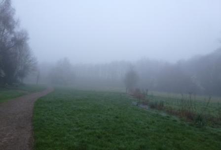 Misty Meadows, March