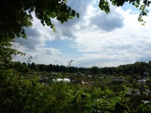 North part of Penwortham Holme, Allotments