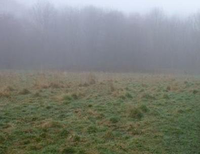 Well field, Penwortham