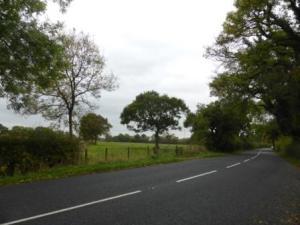 Lindle Lane
