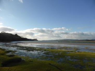 Green Sand Islands IV