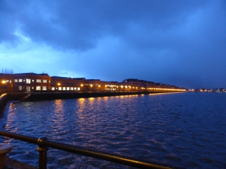 Snowdrops, Gulls and Docks 032 - Copy