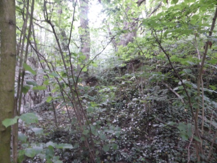 Fulwood Barrow Mound