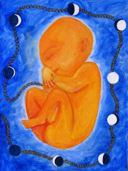 Gestation by Catriona McDonald