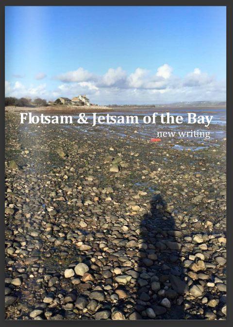 Flotsam and Jetsam of the Bay