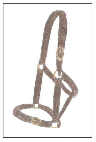 The Halter of Clydno - drawing - border