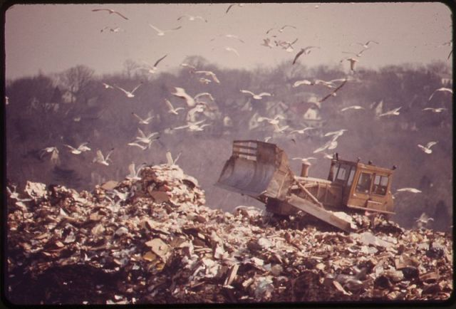 800px-HACKENSACK_DUMP_IS_FEEDING_GROUND_FOR_GULLS._IN_TIME_THIS_LANDFILL_WILL_PROVIDE_RECREATION_FOR_THE_BERGEN_COUNTY..._-_NARA_-_549741