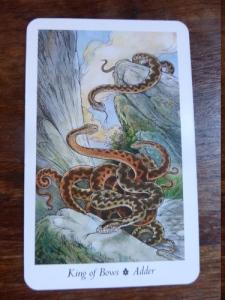 Adder - King of Bows - Wildwood Tarot