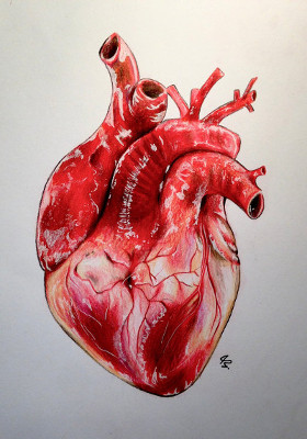 heart-drawing-real-61-by-lunacanan-getdrawings