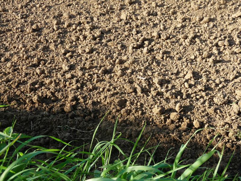 soil_free_stock_photo_med