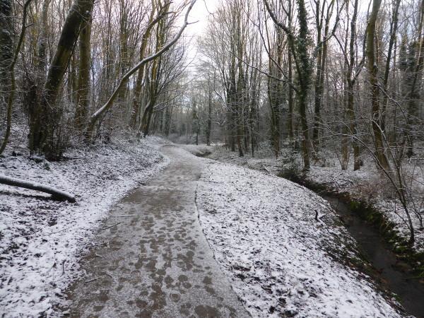 Snowy GCV 3