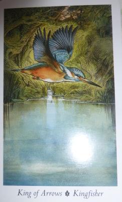 Kingfisher King of Arrows
